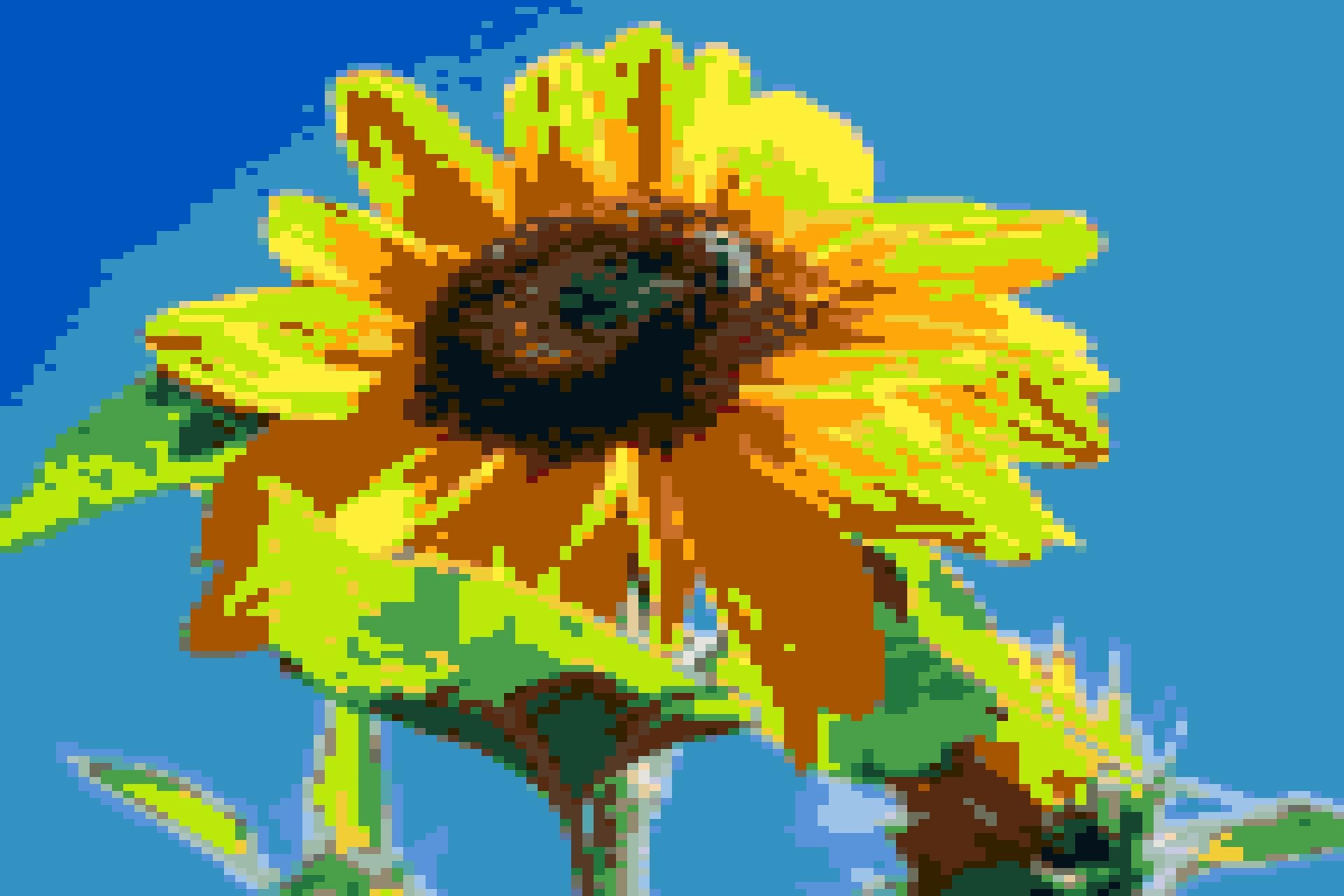 sunflower_block