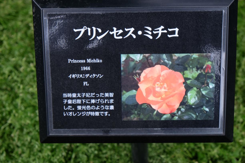 princess_michiko